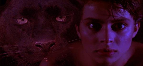 Paul Schrader S Cat People Furiouscinema Com