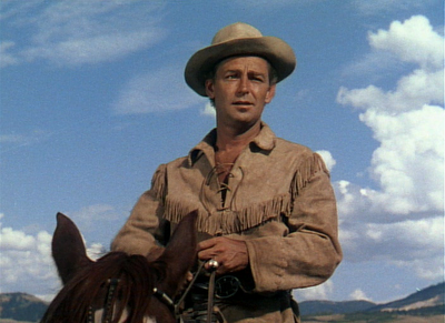 Alan Ladd as Shane