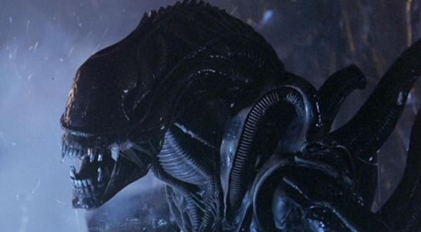 Alien Movie Ridley scott's alien remains a